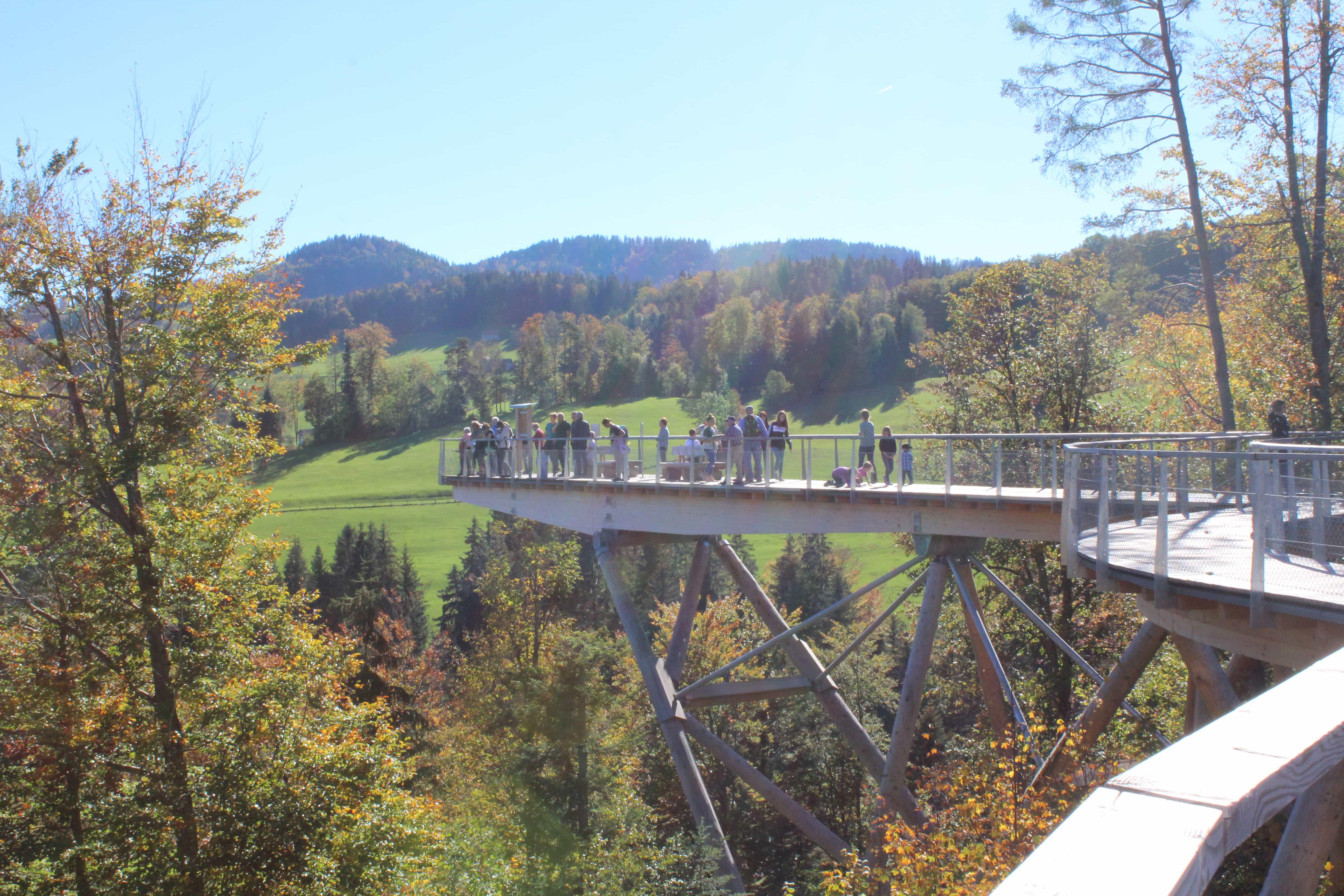 Schweizer Holz hautnah erleben! Ausflugsideen für Gross und Klein.